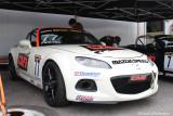Copeland Motorsports-Hernan Palermo