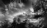 Infrarouge - infrared