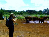 Deb at David Sheldrick's Wildlife Trust