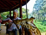 At Langata Giraffe Center