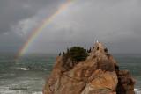 Cormorants and Gulls Under the Rainbow