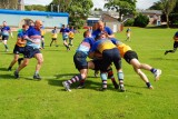 Bute Rugby