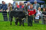 Bute Agricultural Show 2015