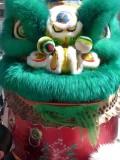 Chinatown Dancing Lion