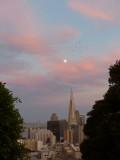 Transamerica Pyramid Moonrise