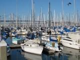 South Beach Harbor
