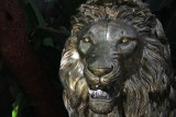 The Mirage Lion