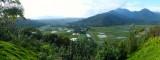 Hanalei Valley