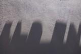455 Shadows
