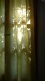 Hotel Gulec Window
