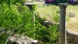 Kos Town Ruins