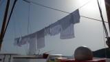 Zeus Laundry