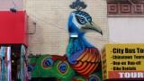 Grant Avenue Peacock