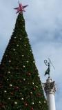Union Square Christmas Tree