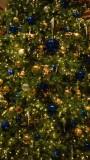 Fairmont Christmas Tree