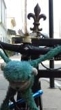Bicycle Monkey