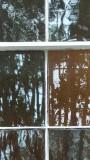 Garden District window reflection