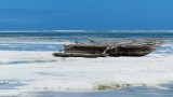 Kiwengwa Beach