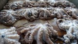 Octopus at the Fish Market