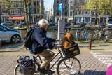 Nice Ride in Amsterdam