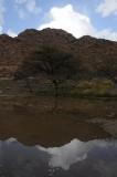 Wadi Shafa.jpg