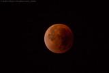 Total Lunar Eclipse September 2015