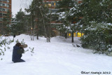 Finland - Photographing a male Capercaillie near Helsinki
