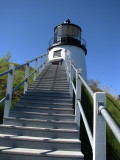 Steps to Climb