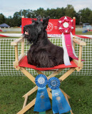 Pioneer Valley Kennel AKC Agility Trial 2013