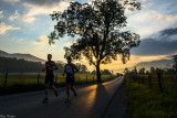 Cove Runners