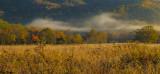Across an Autumn Meadow