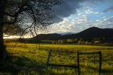 Morning Across an Empty Field
