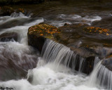 When the River Runs Full