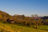 Barn on a Townsend Hillside