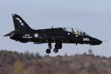 HawkT1_XX316_PIKLarge.jpg