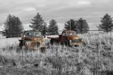 AustinBedford1-ColourPopped.jpg