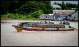 Tan Chau - Duck boat