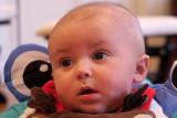 New Grandson Beau, First Christmas.