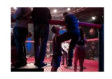 Cage fighting, Bombay