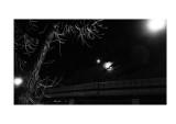 Moon, streetlights, overpass