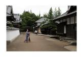 Living the Edo Wonderland dream