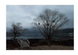 Near Mount Fuji: dawn, rainy day