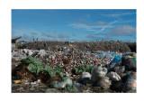 Dandora dump