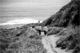 The Dash To The Beach