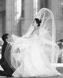 :: Gallery ::  WEDDING