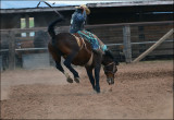 Rodeo de Galisteo