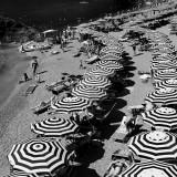 Noir et blanc (2011-20xx)