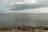 Mer du nordsur la digue du Zuiderzee