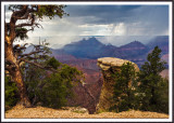Ridin' the Storm Out at Grandview Point, Grand Canyon National Park, AZ