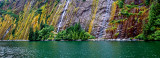 Waterfall on Mossy Wall, Misty Fjords National Monument, AK
